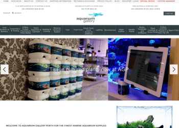 aquarium gallery